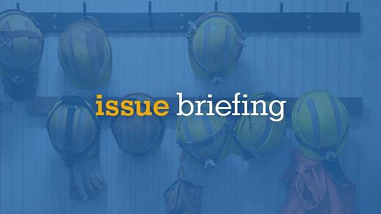 issue briefing